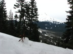 Stickman joined the hike for a while but he decided to veg out and admire the view of Mt. Hood.
