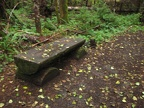 A bench to take a rest along the Big Creek Falls.