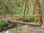 A picture of the old log bridge over the creek just before the trail junction with the Storey Burn Trail. This is now a bridge wide enough for mountain bikes.