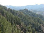 A view of the Tillamook State Forest from the Elk Mountain-Kings Mountain Trail.