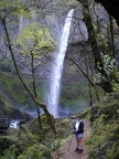 Elowah Falls in the Columbia River Gorge