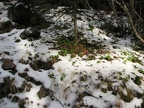 Fall snow on the trail. This are can get deep snows and people have been lost in the area.