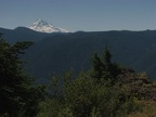Looking south to Mt. Hood from Hardy Ridge.