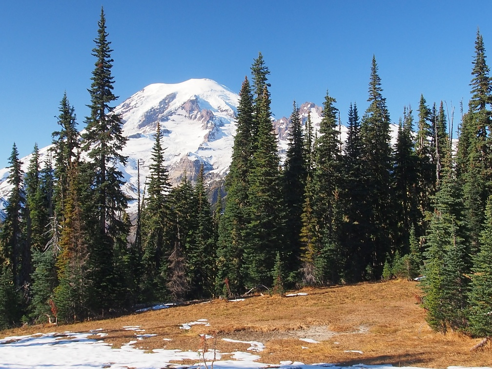 Once you reach clearings on the Cowlitz Divide, the views just get better and better.