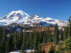 Here is the view you have been waiting for. Little Tahoma is on the right and if you have binoculars, you might be able to see Camp Muir on the left.