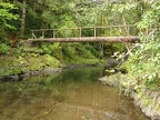 Log bridge over Cedar Creek along the Wilson River Trail. Look for salmons spawning in the fall in the clear waters of this creek.