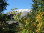 Mt. St. Helens viewed from near the June Lake Trailhead. The end of September is usually the best time for fall colors along this trail.