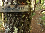 There are elevation signs every 1,000 feet to show how high you have climbed up towards the summit of 3,226 feet on the King's Mountain Trail in the Tillamook State Forest, Oregon.