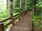 Boardwalk above the Lewis River near the Lower Falls Recreation Area Campground.