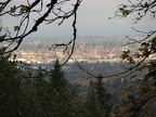 A break in the trees allows a view of the Portland industrial area from the Maple Trail.