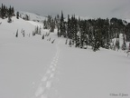 I practised routefinding by fixing on a distant point and going in a straight line along Mazama Ridge.
