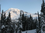 Mt. Rainier rises majestically above everything early in the morning.