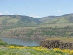 Looking towards Washington across the Columbia River Gorge from Rowena Crest at Tom McCall Nature Preserve.