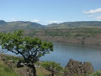 Looking Northwest from the Rowena Plateau Trail across the Columbia River towards Washington. This is near the turn-around point of the trail.