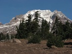 Climbing the Palmateer trail soon brings you to the timberline and the views become more impressive with every few steps.