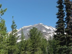 Mt. Adams from Trail 183 where it intersects with Trail 9.