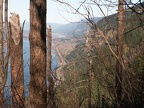 Viewpoint overlooking the Columbia River Gorge