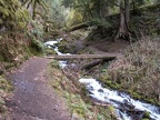 Wahkeena Creek Trail