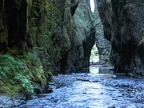 Oneonta Gorge looking towards the trailhead.