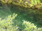 Emerald waters of Little North Santiam River.