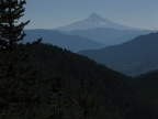 A beautiful view of Mt. Hood from just above the Pacific Crest Trail.