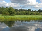Ponds along the Salmon Creek Trail.