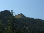 Looking up at Silver Star Mountain from the Bluff Mountain Trail.