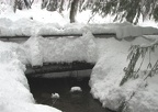 Snow buries a bridge on the southwest side of Longmire Meadows. The water is still warm enough to stay open all winter.