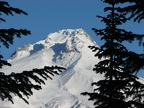 Summit of Mt. Hood from the snowshoe trail from Barlow Pass to Twin Lakes, OR