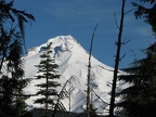 Mt. Hood from the snowshoe trail from Barlow Pass to Twin Lakes, OR