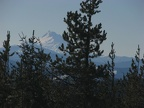 Looking south to Mt. Jefferson from the promontory which is west of the Twin Lakes Trail.