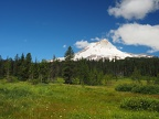 Elk Meadows - Meadows Photos OR
