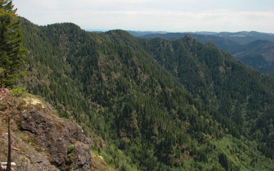 Wilson River Trail – Elk Creek to Kings Mtn. Trailhead, OR