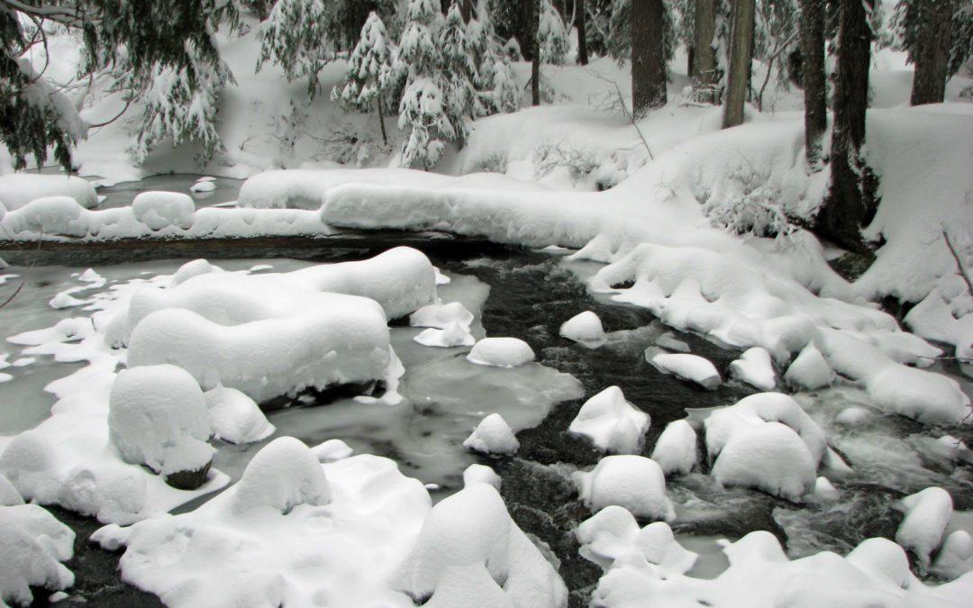 Paradise River Snowcamp, WA