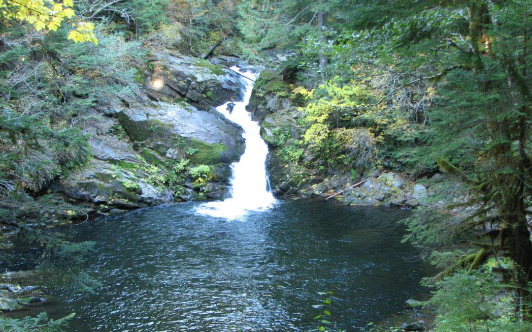 Siouxon Creek, WA