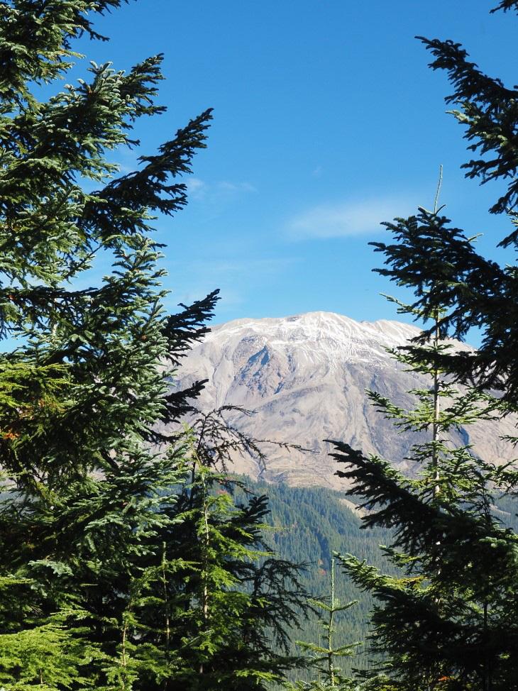 Mt. St. Helens Cinnamon Trail