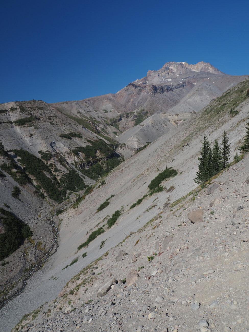 Mt. Hood at Zigzag Canyon