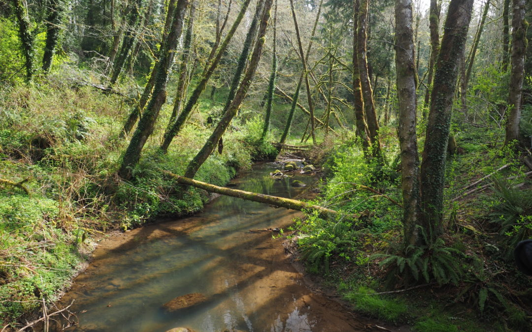 Tryon Creek, OR