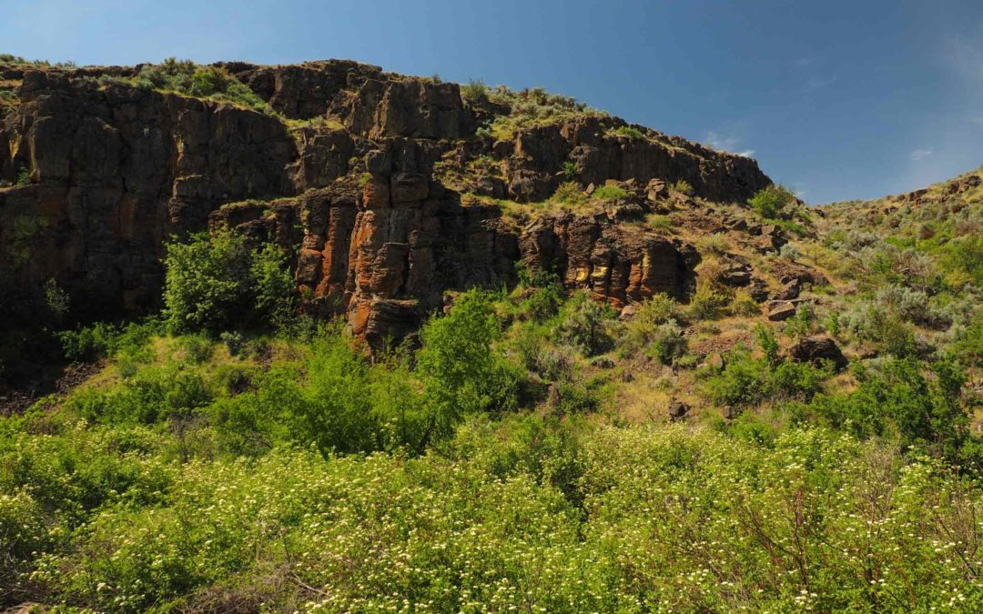 Cowiche Canyon, WA