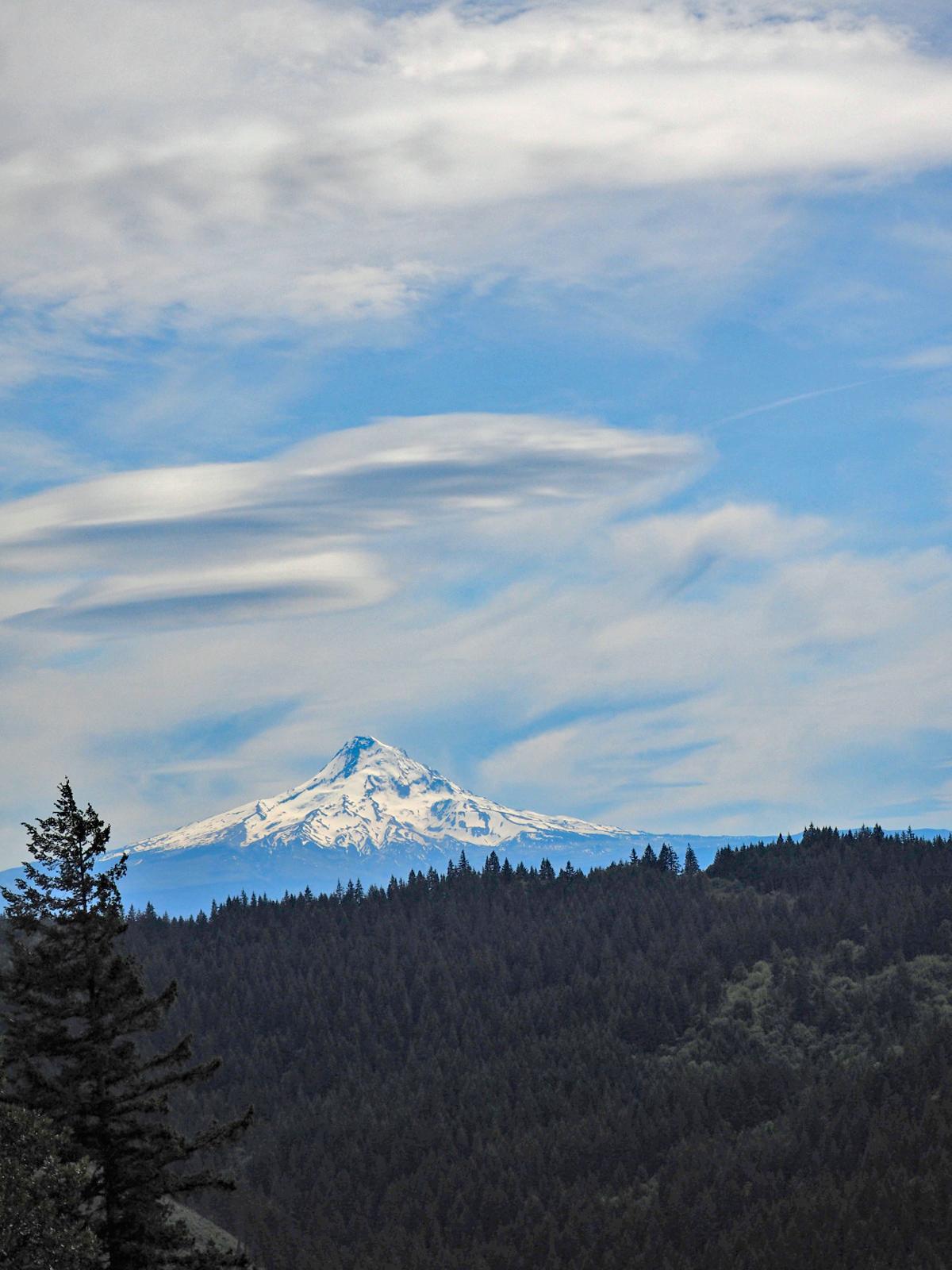 Mt. Hood from the Weldon Wagon Trail