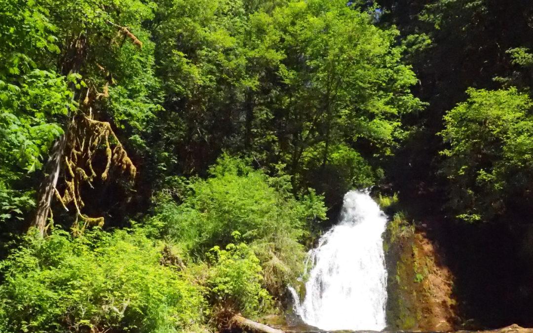 Alsea Falls, OR