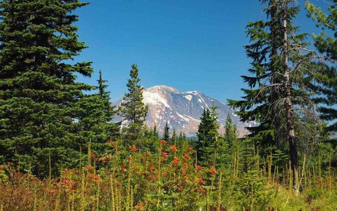Sawtooth Mountain, WA