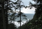 This is the last view of the ocean as the trail heads towards the southern end of the Cape Lookout North Trail.