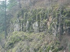 A layer of columnar basalt makes up part of a cliff across from the Wahkeena Falls Trail.