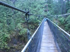 The suspension bridge over the stream is 240 feet long and about 100 feet above the stream. The bridge is very stable and doesn't bounce much if you walk gently.