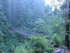 The suspension bridge over the stream is 240 feet long and about 100 feet above the stream. This may be the longest suspension bridge for hiking in Oregon or Washington.