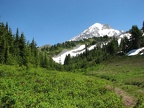 Taking a side trail near Cairn Basin reveals this tranquil view of Mt. Hood.
