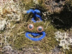 Artistic license along the Saddle Mountain. Maybe it is a Smurf?