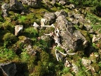 Animal skeleton at the base of the scree field