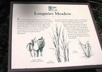 The trail loops around historic Longmire Meadows and has several signs explaining plants, wildlife, and history around the meadows.